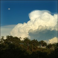 Cumulonimbus with pileus CG