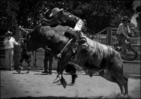 Rodeo1 CG