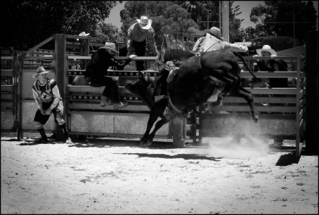 Rodeo4