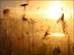 Flotsam Jellyfish_3